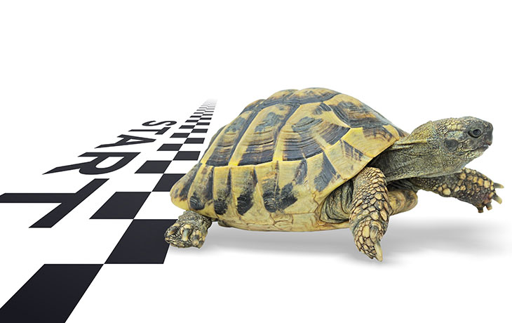 Start Slow: The Right Way to Set Up a Pilot of Your CRM Software
